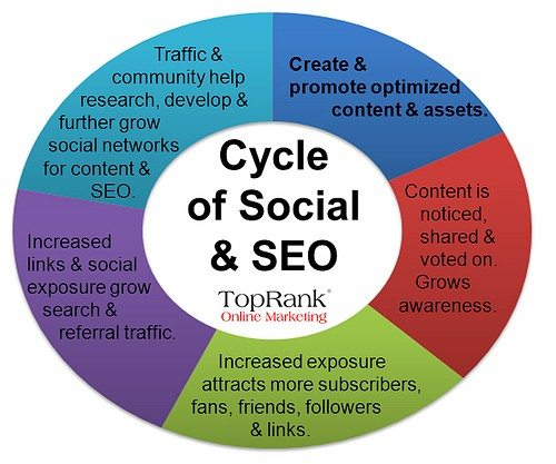 content seo cycle